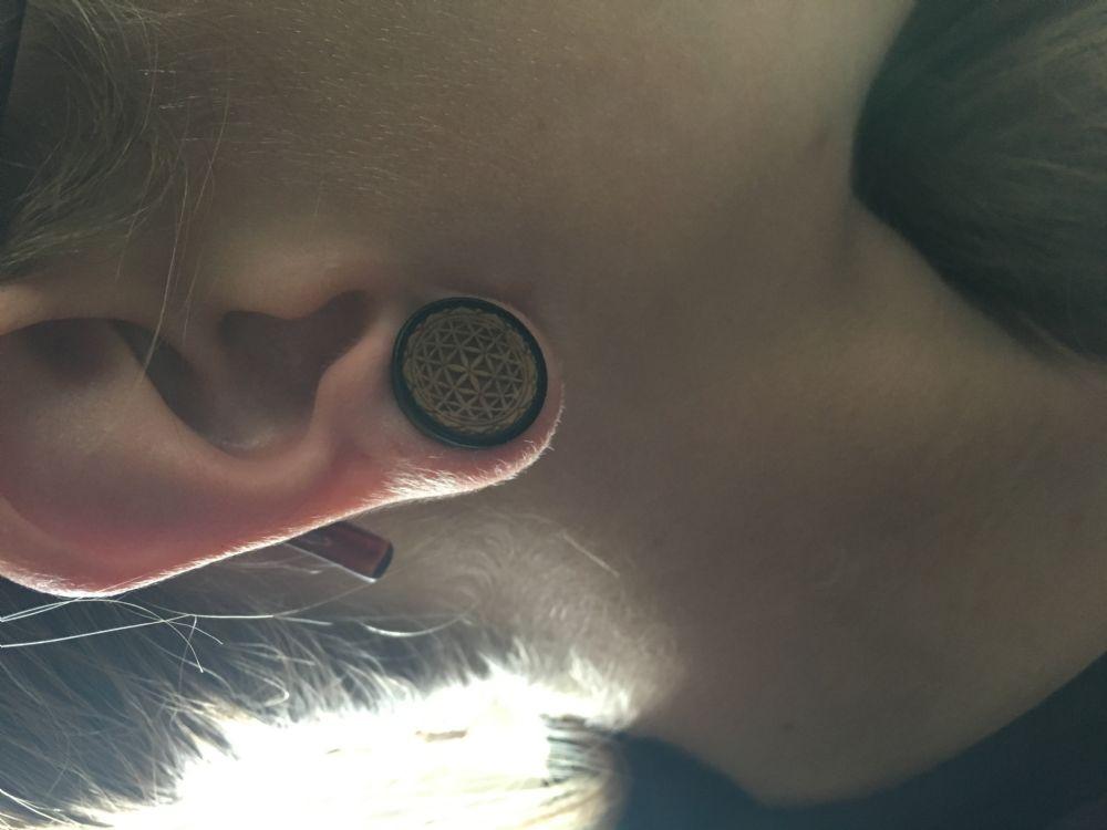 "5/8""  (pair) Dark Tamarind Seed of Life Plugs -- Photo # 83485"