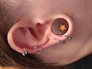 """3/4""""  (pair) Double Sided Bloodwood Plugs -- Photo # 81858"""