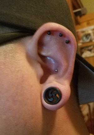 "9/16"" Pinwheel spiral carved ebony wood plugs"