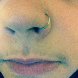 "Nose Hoop 20g 5/16""  -- Photo # 62036"