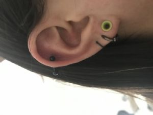 6g Spring Collection Silicone Earskin