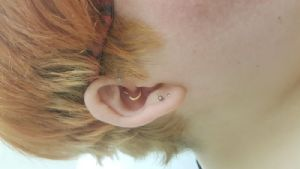 16g 10mm Rose gold colored -- Photo # 79858