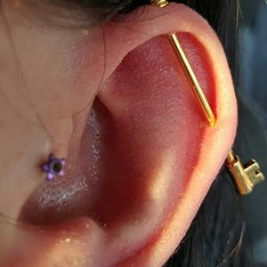 "14g 1-1/4"" Purple opal -- Photo # 74232"